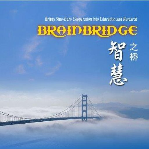 Brainbridge Program